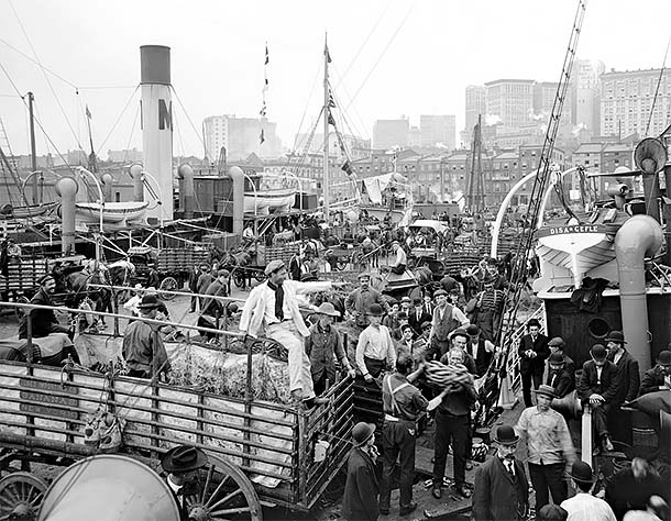 New York Banana Docks 1907