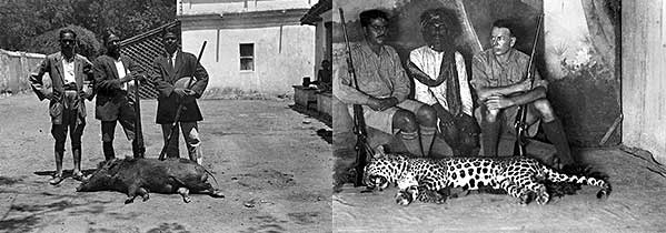 Old photographic plates showing Indian hunting tropies, Boar and Leopard