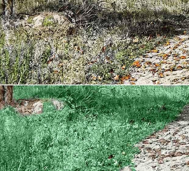 Advanced colouring techniques. Flat colour versus varied colour