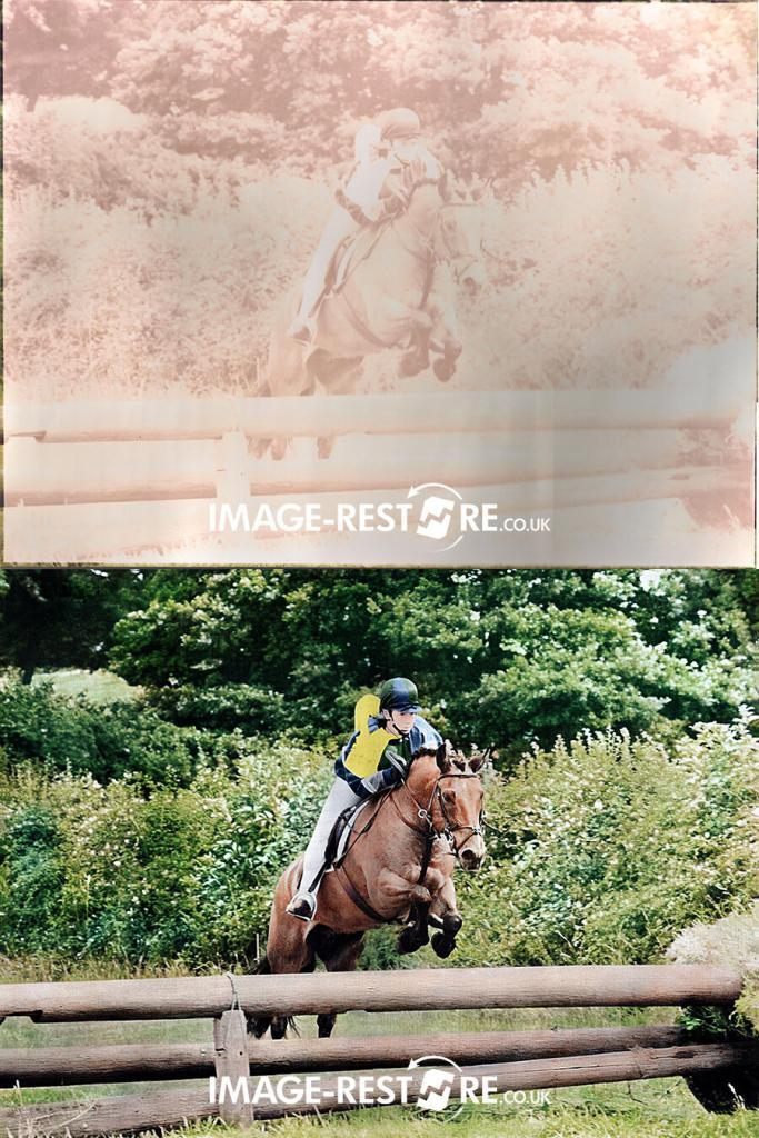 horse photo restored and colourised