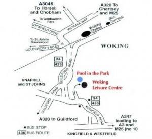 Woking History Fair