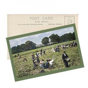 Snapfish design your postcard
